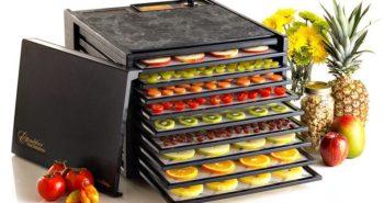 Kevin Angileri Food Dehydrators